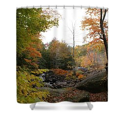 Colors Along The Stream Shower Curtain by Lois Lepisto