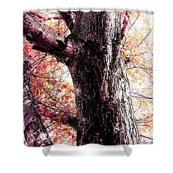 Colors And Texture  Shower Curtain
