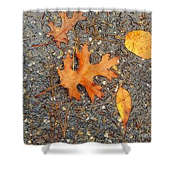 Colors Of Autumn In Montreal Shower Curtain