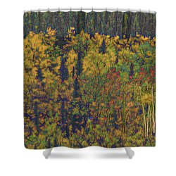 Colors Of Denali Shower Curtain