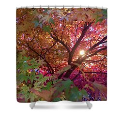 Colors Of Joy Shower Curtain by Karen Horn