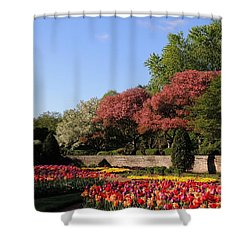 Colors Of May Shower Curtain by Teresa Schomig