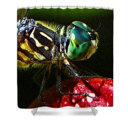 Shower Curtain featuring the photograph Colors Of Nature - Dragonfly On A Pitcher Plant 007 by George Bostian