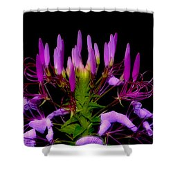 Shower Curtain featuring the photograph Colors Of Nature - Lavender 001 by George Bostian