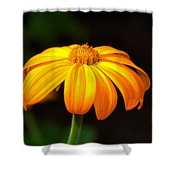 Shower Curtain featuring the photograph Colors Of Nature - Yellow Flower 020 by George Bostian