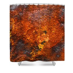 Shower Curtain featuring the photograph Colors Of Rust 2 by Richard Ortolano