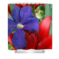 Shower Curtain featuring the photograph Colors Of Summer by Rebecca Overton