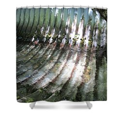 Shower Curtain featuring the photograph Colors Of The Culvert by Marie Neder