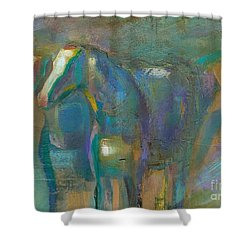 Shower Curtain featuring the painting Colors Of The Southwest by Frances Marino