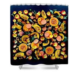 Colors Of Winter Squash Shower Curtain