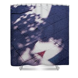 Colors On The Shadows Shower Curtain