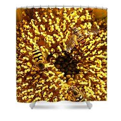 Colour Of Honey Shower Curtain