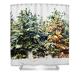 Coloured Trees  Shower Curtain