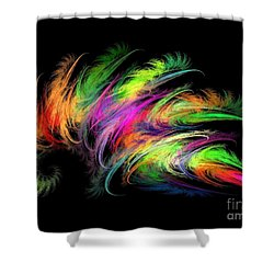 Colourful Feather Shower Curtain