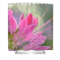Colourful Greeting II Shower Curtain