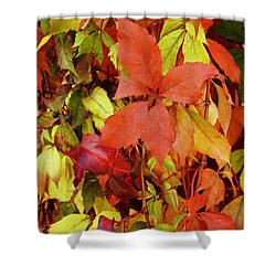 Colours Of Autumn Shower Curtain