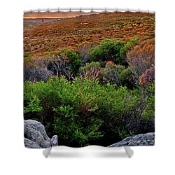 Shower Curtain featuring the photograph Colours Of North Head by Miroslava Jurcik