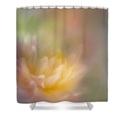 Colours Of Softness Shower Curtain