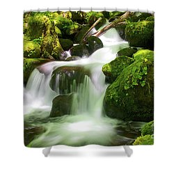 Columbia Gorge Stream Shower Curtain