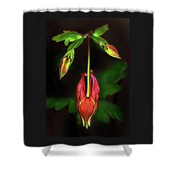 Columbine #1 Shower Curtain