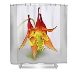 Columbine #3 Shower Curtain