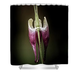 Columbine Shower Curtain