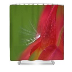 Shower Curtain featuring the photograph Columbine Fair by Brenda Jacobs