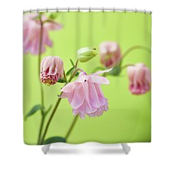Columbine Shower Curtain