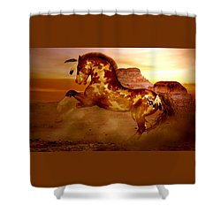Comanche Shower Curtain by Valerie Anne Kelly