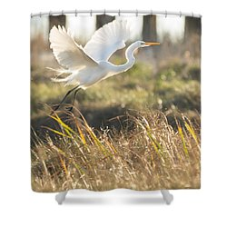 Shower Curtain featuring the photograph Come Fly With Me by Julie Andel