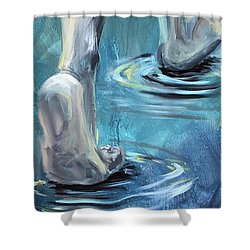Shower Curtain featuring the painting Come by Lisa DuBois