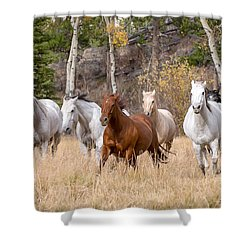 Come Running Shower Curtain