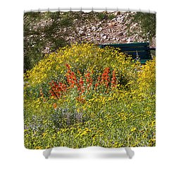 Come Sit Awhile Shower Curtain by Anne Rodkin