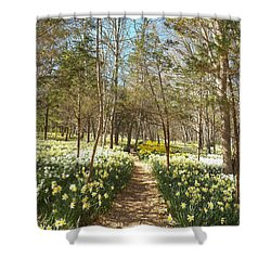 Come Walk Among The Daffodils Shower Curtain
