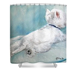 Comfort Zone Shower Curtain by Mary Sparrow