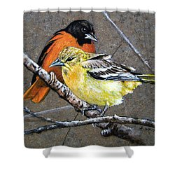 Comforting Shower Curtain by Stan White
