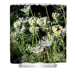 Coming And Going -  Shower Curtain