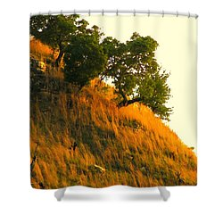 Shower Curtain featuring the photograph Coming Home Again by Joe Jake Pratt