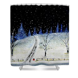 Coming Home For Christmas Shower Curtain