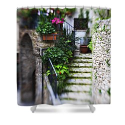 Coming Home Shower Curtain by Marilyn Hunt