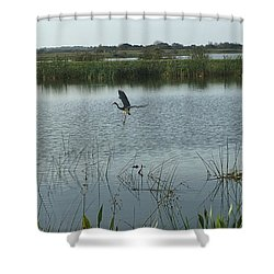 Shower Curtain featuring the photograph Coming In For A Landing by Kay Gilley