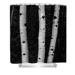 Shower Curtain featuring the photograph Coming Out Of Darkness by James BO Insogna