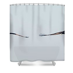 Shower Curtain featuring the photograph Coming Right At You - Two Bald Eagles by Ricky L Jones