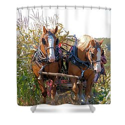 Coming Through The Corn Shower Curtain by Valerie Kirkwood