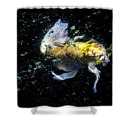 Shower Curtain featuring the photograph Coming Up For Air by Eric Christopher Jackson