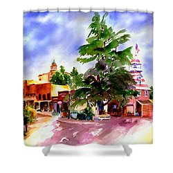 Commercial Street, Old Town Auburn Shower Curtain
