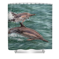 Common Dolphins Shower Curtain