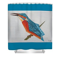 Common Kingfisher Shower Curtain