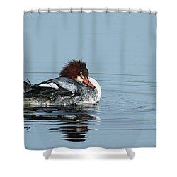 Common Merganser Shower Curtain