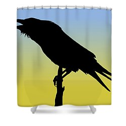 Common Raven Silhouette At Sunrise Shower Curtain